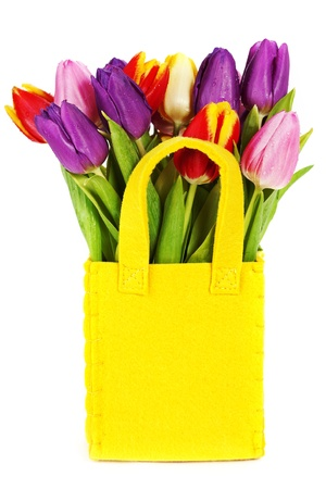 fresh spring tulips on white background Stock Photo - 13843908