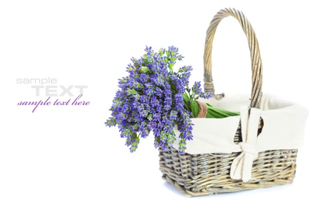 basket with lavender flowers on white background photo