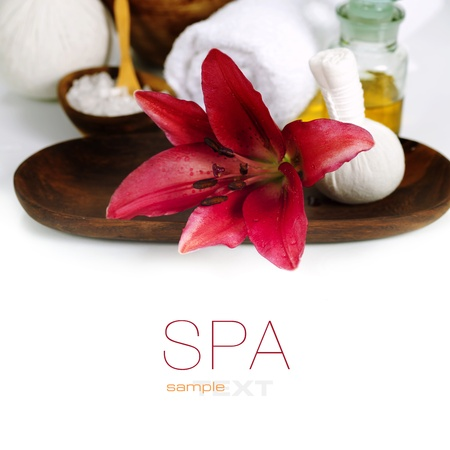 stone bowl: Spa concept (flowers, towel and sea salt). White background (with easy removable sample text) Stock Photo