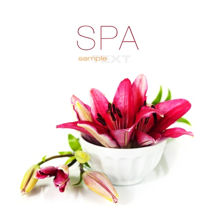 bowl of water and flowers on a white background (with easy removable sample text)