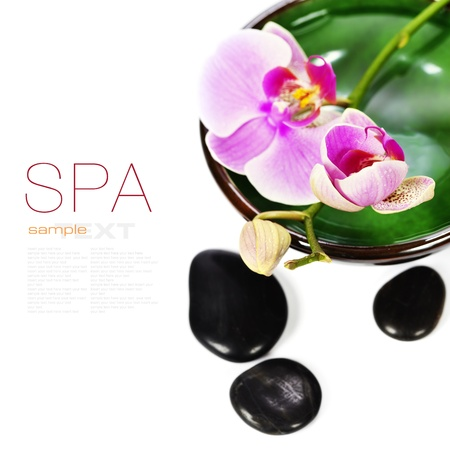 zen spa: Orchid Spa Composition- Spa and healthcare concept  with easy removable sample text  Stock Photo