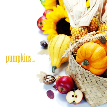 Harvested pumpkins with fall leaves  With easy removable sample text  Stock Photo