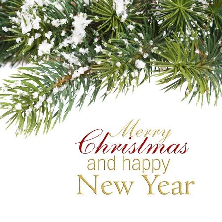 Zweig der Weihnachtsbaum auf weiß (mit Beispieltext)