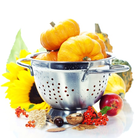 Harvested pumpkins in metal colander over white photo