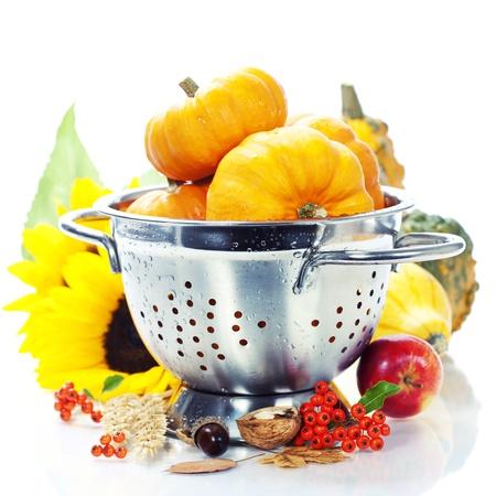 a colander: Harvested pumpkins in metal colander over white Stock Photo