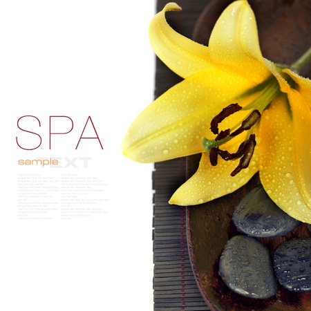 removable: Spa concept (with easy removable sample text) Stock Photo