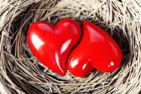 seasonal symbol: Two red hearts in birds nest on wooden board