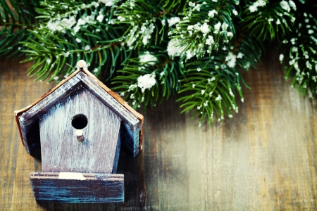 Bright christmas composition with small birdhouse Stock Photo - 16826942