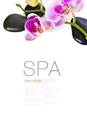 Orchid Spa Composition- Spa and healthcare concept (with easy removable sample text) photo