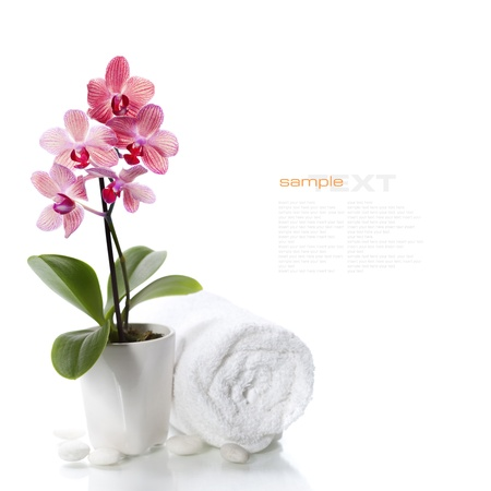 beauty care: spa composition with beautiful pink orchid over white