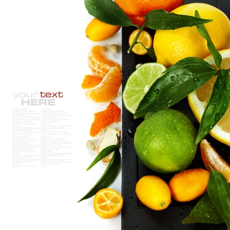 Citrus fruits isolated on white (with easy removable text) photo