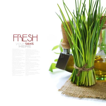 cebollin: Un manojo de cebolletas frescas y aceite de oliva sobre blanco (con el texto extraíble fácil)