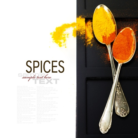 Bright spices border.Isolated on white (with easy removable text) photo
