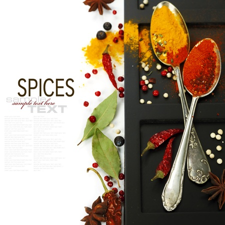 wooden insert: Bright spices border.Isolated on white (with easy removable text)