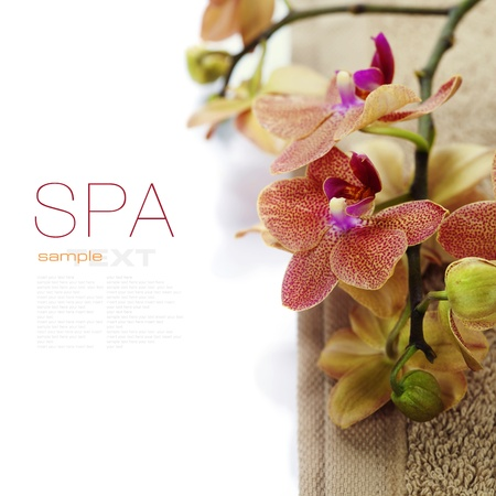 organic spa: spa concept (orchid flower and towel) over white (with easy removable sample text)