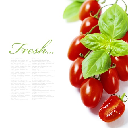 fresh tomatoes  and basil on white  background (with easy removable sample text) photo