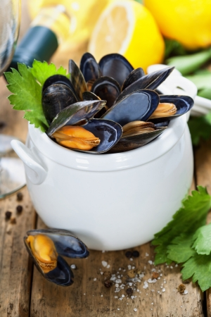 wine sauce: Mussels cooked with white wine sauce in a white pot Stock Photo