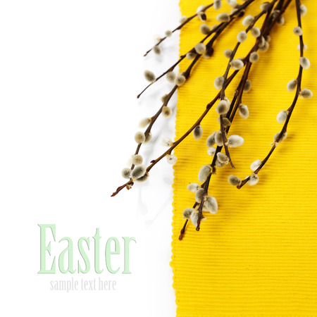 Willow flowers-spring and easter concept (with easy removable text) photo