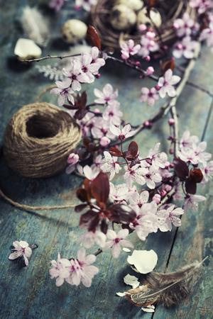 huevos de codorniz: Composición de Pascua con huevos de codorniz y ramas flor de cerezo Foto de archivo