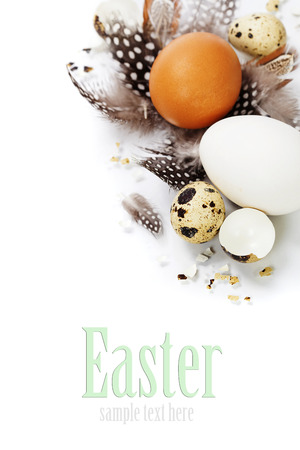 speckle: eggs and feathers over white (with easy removable text) Stock Photo