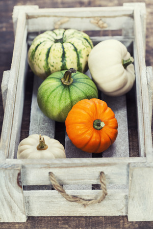 pumpkin patch: pumpkins on old wooden table Stock Photo