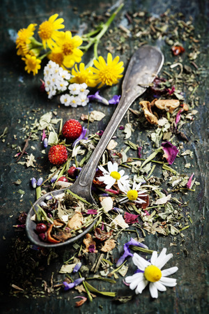 chinese herbs: Herbal tea with wild flowers and berry on wooden background - bio food, health and diet concept