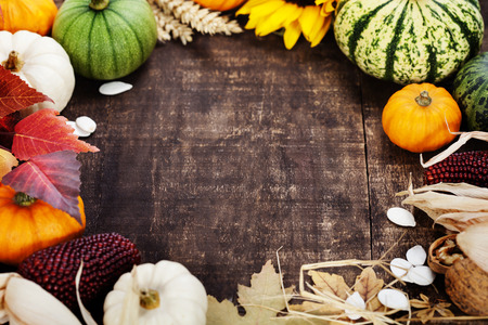 Autumn frame from pumpkins and corn on old wooden table. Thanksgiving day concept