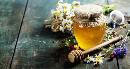 chamomile tea: Honey and Herbal tea on wooden background - summer, health and organic food concept