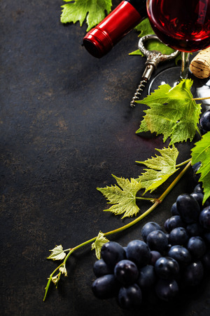 Food background with Wine and Grape. Lots of copy space.  photo