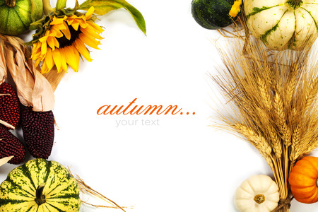 thanksgiving dinner: Autumn frame over white. Thanksgiving day, harvesting  or autumn concept (with easy removable sample text)