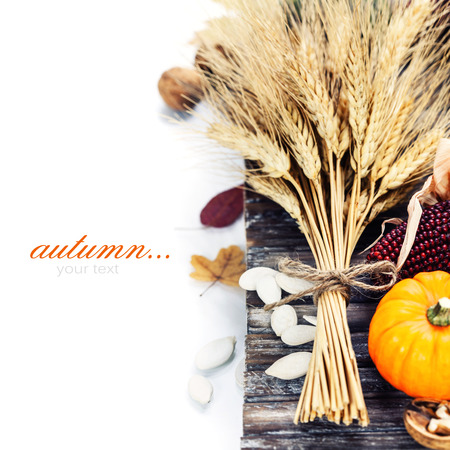 Autumn composition ( pumpkins, wheat and corn on old wooden table). Thanksgiving day concept  (with easy removable sample text) Stock Photo