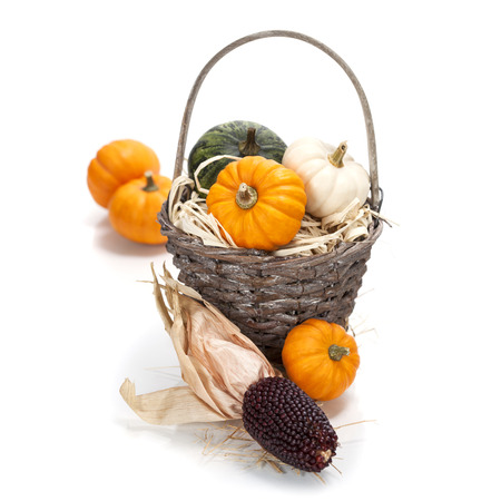 Autumn composition ( pumpkins and corn on old wooden table). Thanksgiving day concept photo
