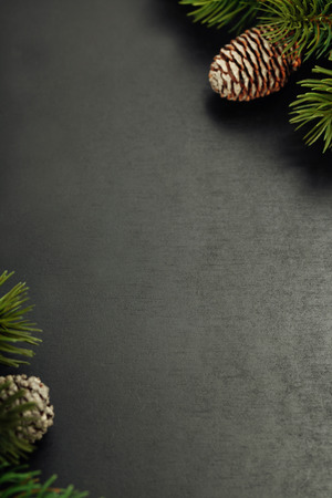 Fir branches with cones on wooden background Stock Photo
