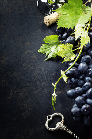 des vins: Food background with Wine and Grape. Lots of copy space.