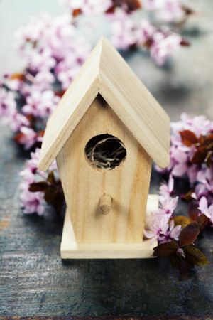 birdhouse: Easter composition with little birdhouse and Cherry Blossom branches Stock Photo