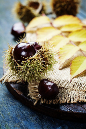 marron: Autumn concept with Chestnuts and leaves on wooden board