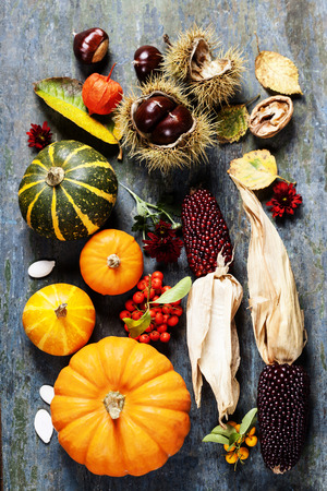 dinner food: Autumn concept with seasonal fruits and vegetables on wooden board Stock Photo
