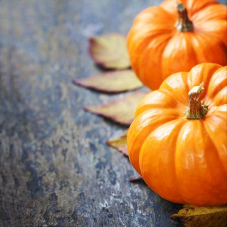 copies: Autumn pumpkins  on wooden board