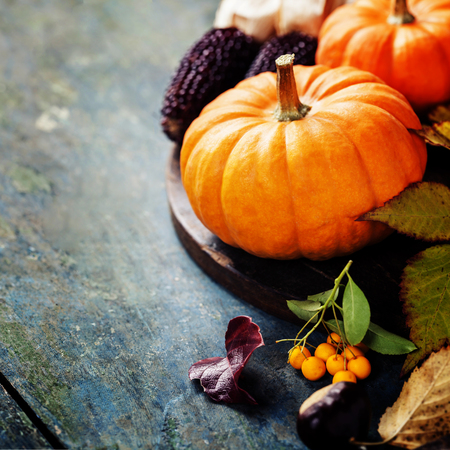 pumpkin leaves: Autumn concept with seasonal fruits and vegetables on wooden board Stock Photo