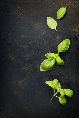 black stone: basil leaves on darc rustic background