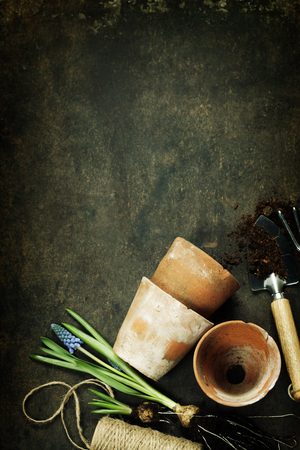 replant: Garden tools on vintage background with space for text - Spring or Gardening Background Stock Photo