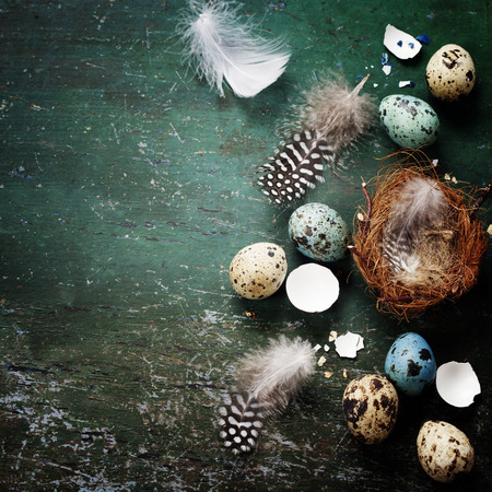 Easter composition with eggs and nest on rustic wooden background