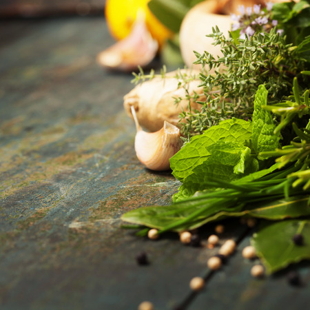 coriander: Herbs and spices selection on rustic background Stock Photo