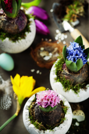 festal: Hyacinth flowers, garden tools and easter eggs on rustic background Stock Photo