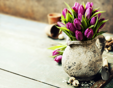 blue tulip: Pink tulips bouquet, easter eggs and garden tools on rustic background
