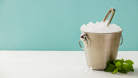 Metal ice bucket and mint