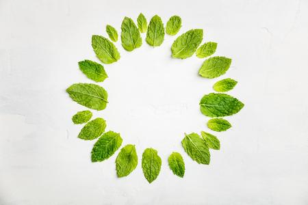 Mint leaves composition