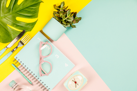 Creative flat lay with plants, glasses, notebook diary and pen on pastel colors background