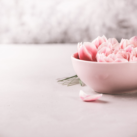Pink flowers floating in water on blue background