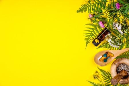 Concepto de hierbas silvestres y curativas. Hierbas silvestres y flores sobre fondo amarillo. Alimentación limpia, biohaking, cocina sana o dieta paleo. Vista superior, plano, copyspace Foto de archivo